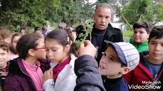 L' Académie Du Lac: Visite à la pépinière