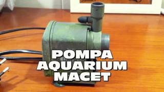 memperbaikifuzziblog: Cara Memperbaiki Pompa Air Aquarium