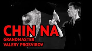 Qinna Is Martial Arts Techniques To Control Or Lock Opponents Joints 2009