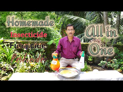 , title : 'How to make Insecticide, Pesticide , Fungicide , Antibiotics Miracle All in one Solution.