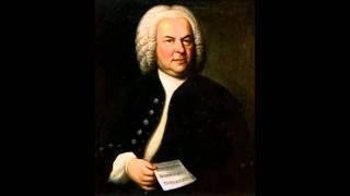 Johann Sebatian Bach   Cantata BWV 147 Jesus Joy Of Mans Desiring