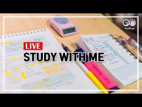 2019.02.20. Study with me / 실시간 공부 방송 / 같이 공부할까요 / Live / ASMR