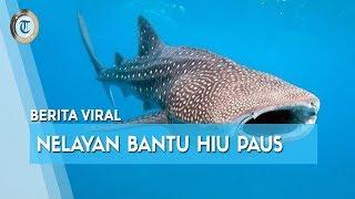 Viral di Medsos Video Nelayan Bantu Lepaskan Hiu Terikat, Susi Pudjiastuti: Terima Kasih Pak Nelayan