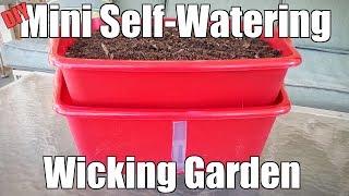 DIY Mini Self-Watering Wicking Garden