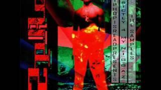 Tupac - Something 2 Die 4
