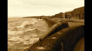 BeachComb  by Mark Knopfler & Emmylou Harris-Large.m4v