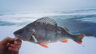 Ловля рыбы на топорики