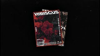 nick mira guitar samples - TH-Clip