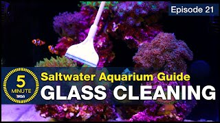 Tips for crystal clear saltwater aquarium glass ways keep it that way!