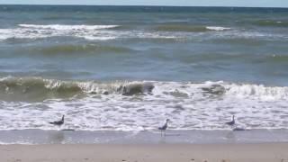 Super Relax - хочу на море