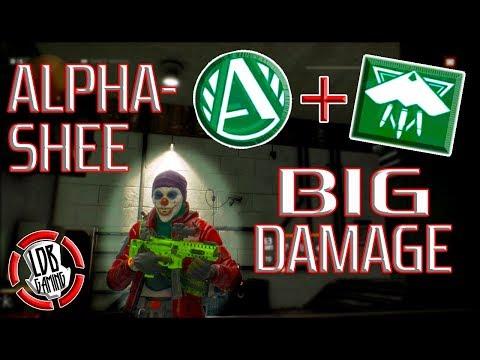 ALPHA-SHEE / BIG DAMAGE / THE DIVISION / 1.8.1