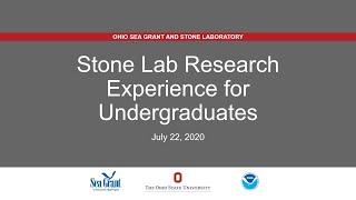 Stone Lab REU Presentations 2020