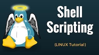 Shell Scripting Tutorial in Linux