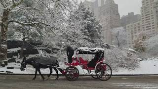 New York City Christmas Snow 2017