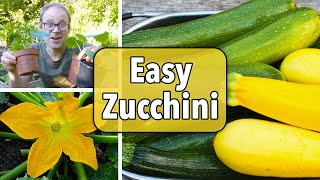 Growing Zucchini (Courgettes) from Sowing to Harvest