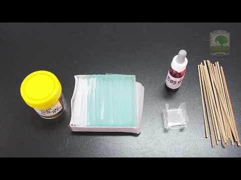 Hogy az enterobiasis átadódik