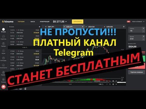Работа в интернете без вложений в белоруси