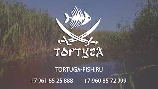 Рыболовная база тортуга астраханская обл лиманский район с вышка