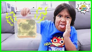 How to keep bread from molding science experiment DIY!!!