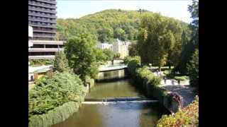 preview picture of video 'Karlsbad Tschechien (Karlovy Vary) Карловы Вары August 2009; Mozart Моцарт'