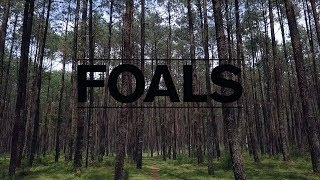 Foals - I'm Done With The World (& It's Done With Me) [UNOFFICIAL VIDEO]