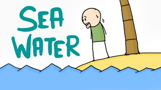 Can we drink Seawater?