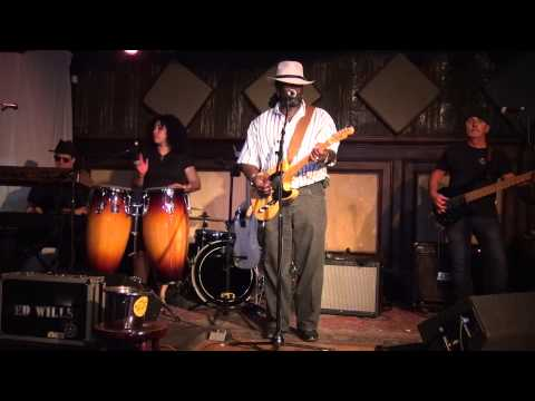Ed Wills & Blues 4 Sale - Rooster