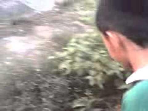 Pampaputi facial mask sa bahay