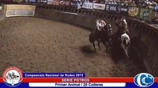 preview picture of video 'CAMPEONATO NACIONAL DE RODEO 2015 / SERIE POTROS'