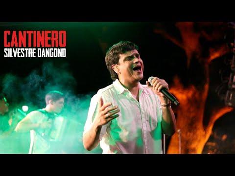 Cantinero - En Vivo Silvestre Dangond Y Ruben...