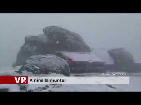 A nins la munte!