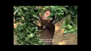 Yumurta Film Fragmanı.mp4