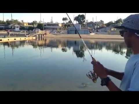 Saltwater Pond Fishing