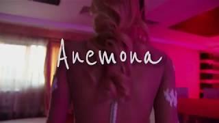 TEASER ANEMONA ZOOM ART FOTO VIDEO