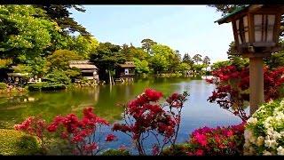 日本金澤市「兼六園」