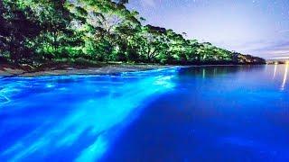 Las 10 Playas Más Hermosas Del Mundo - COMO DE OTRO PLANETA!!! | Kholo.pk
