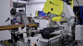 Amsaw 300: Custom Saw For Profile Cutting