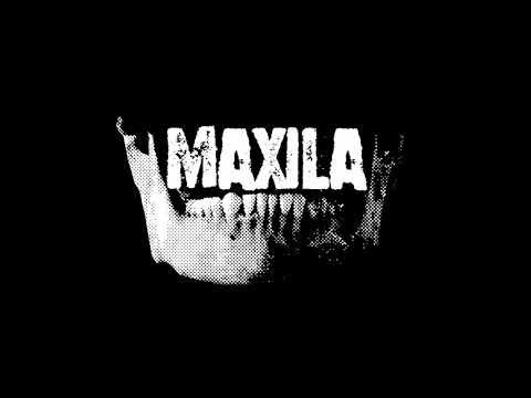 Maxila