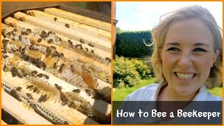 Whats Inside A Beehive?   Beekeeping With Maddie #2