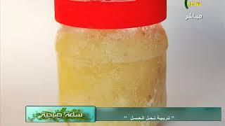 حلقة برنامج ساعة صبحية مع د نصر بسيونى