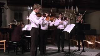 1 Violin Four
