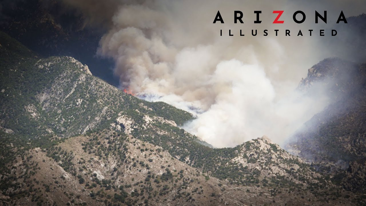 Arizona Illustrated Special: Understanding the Bighorn Fire