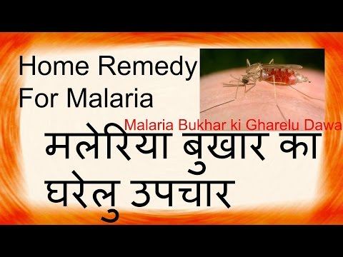 Video Home Remedies for Malaria