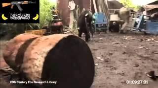 Обезьяна с автоматом калашникова / Monkey with gun