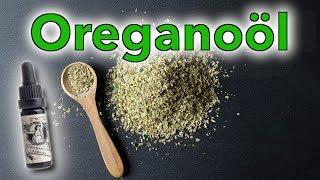 Oregano - Das wohl stärkste natürliche Antibiotikum!
