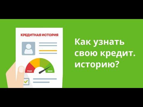 Проверка кредитной истории бесплатно через госуслуги. Реальный способ 100% бесплатно
