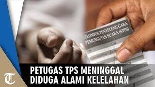 Petugas TPS Meninggal Dunia seusai Antarkan Hasil Penghitungan Suara ke Kelurahan