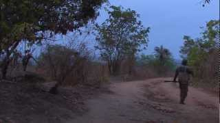 preview picture of video 'Nigerians - 06 - Hunting'