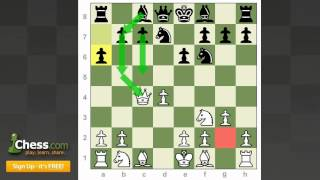 Chess Openings: How to Play the Catalan!