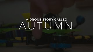 A FPV story called Autumn - drone life